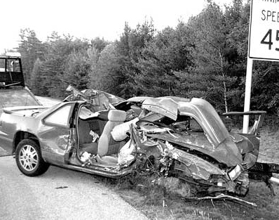 Moose Auto Accident